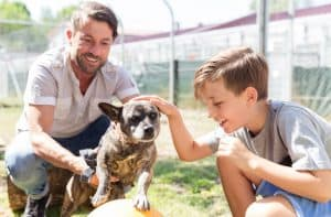 An Adoption Story: Baying Hound and the Owner that Loves Him