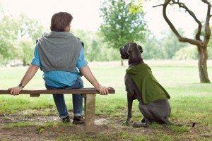 Local Dog Parks Enhances the CommUNITY
