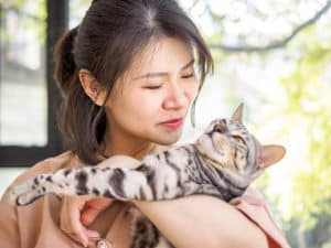 Cats and Their Owners Can Reduce Stress Together