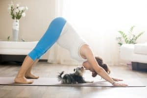 Yoga for Your Pets