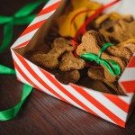 Purrfect Holiday Treats for Pets