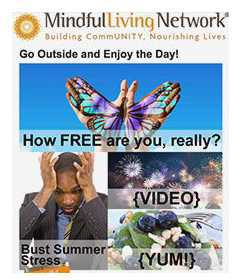 click here to view the current Mindful Living Network newsletter